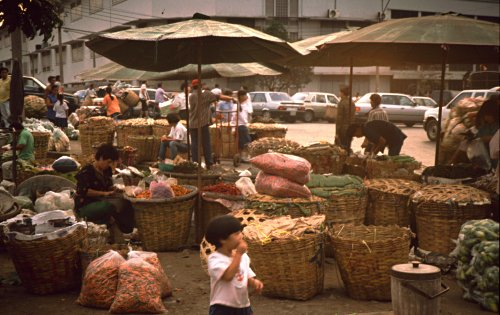 Bangkok: market in the evening light.