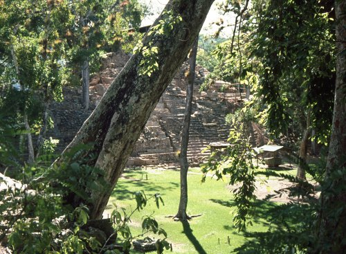 fascinating: Maya Ruins of Cop�n